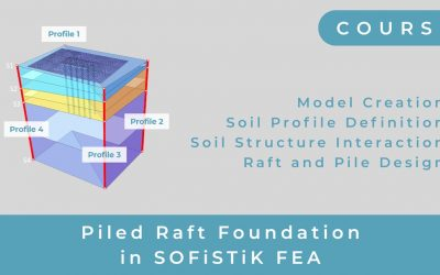 Free Mini Course Piled Raft Foundation Design